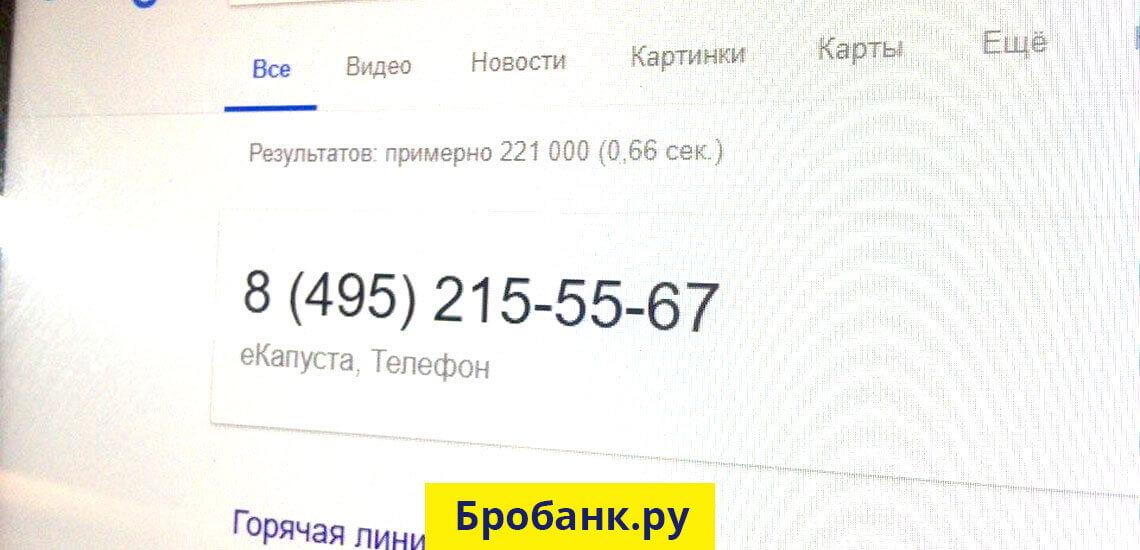 Номер телефона горячей линии Екапуста - звонок бесплатный!
