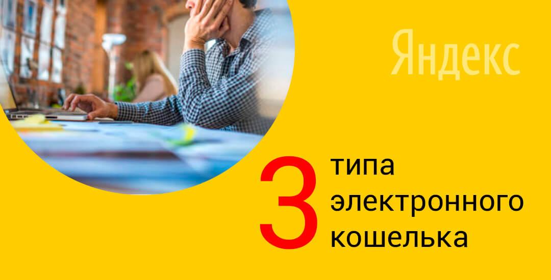 Какие типы электронного кошелька Яндекс.Деньги бывают