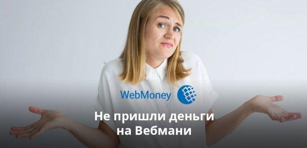 Что делать, если не пришли деньги на Вебмани