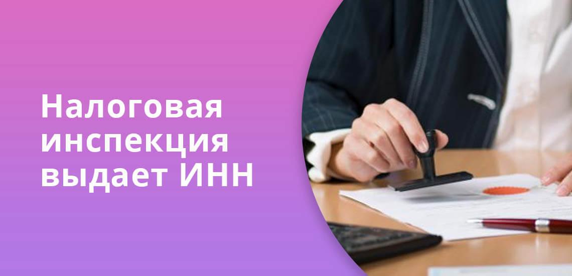 Налоговая инспекция выдает идентификационный код