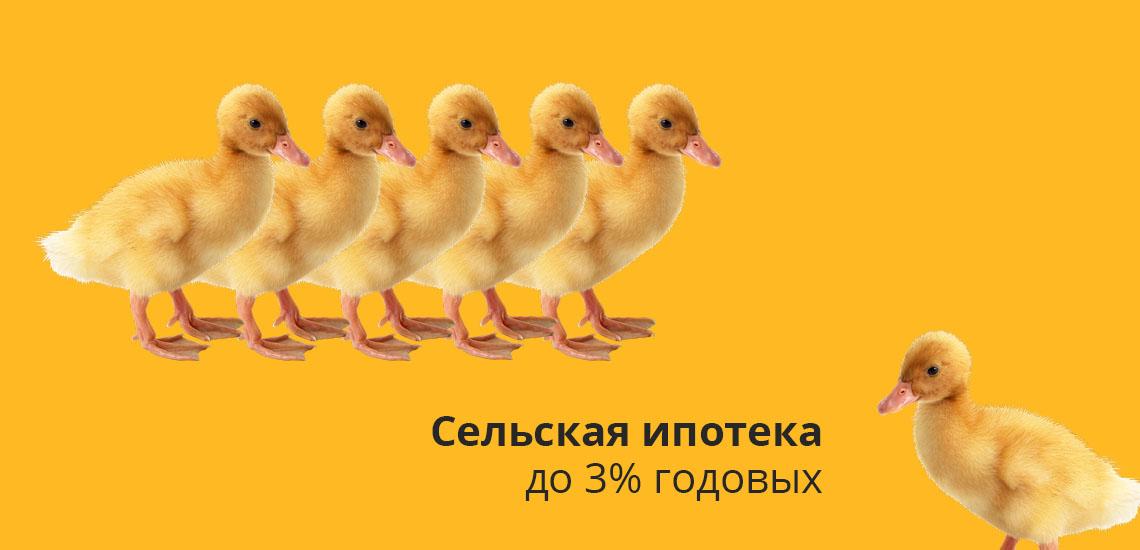 Сельская ипотека до 3% годовых
