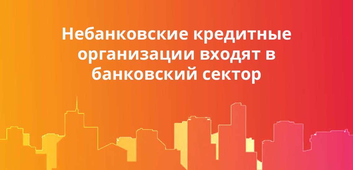 Небанковские кредитные организации входят в банковский сектор