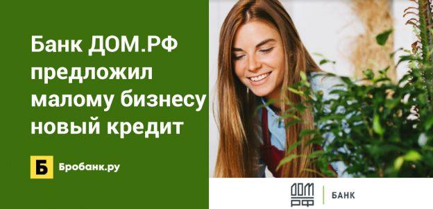 Банк ДОМ.РФ предложил малому бизнесу новый кредит