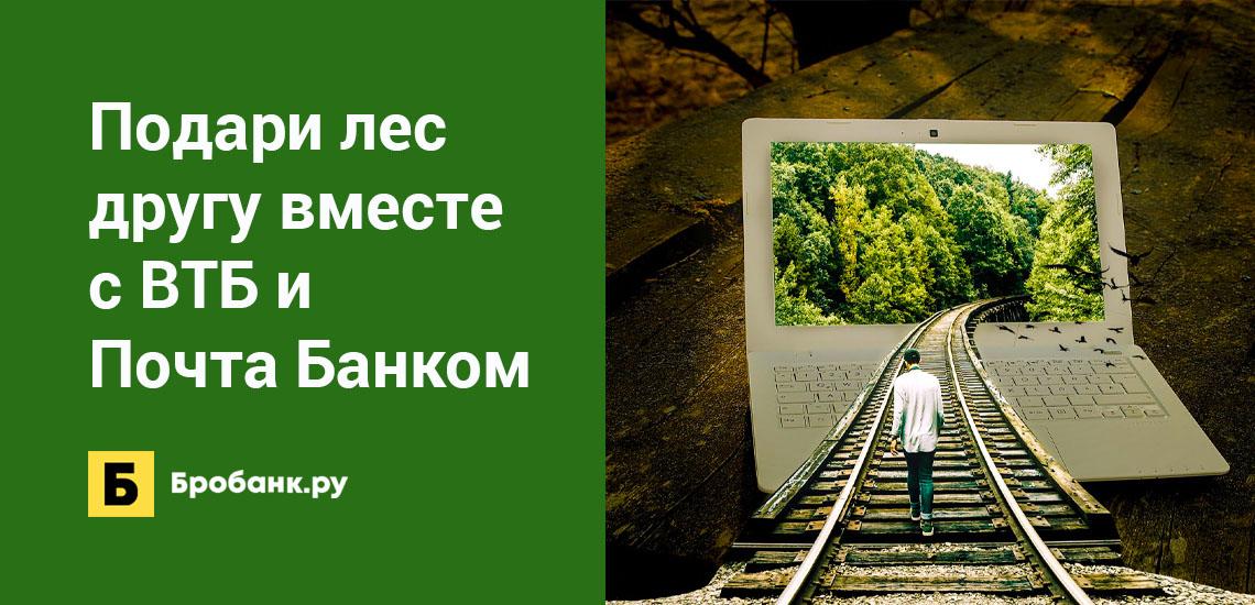 Подари лес другу вместе с ВТБ и Почта Банком
