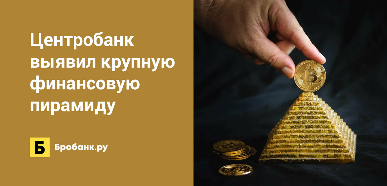 Центробанк выявил крупную финансовую пирамиду