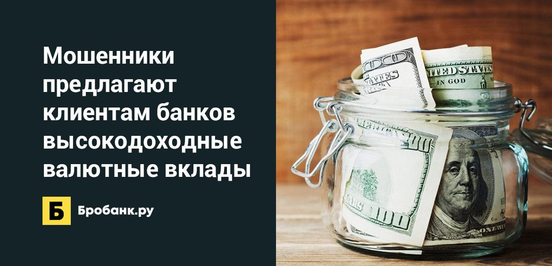 Мошенники предлагают клиентам банков высокодоходные валютные вклады