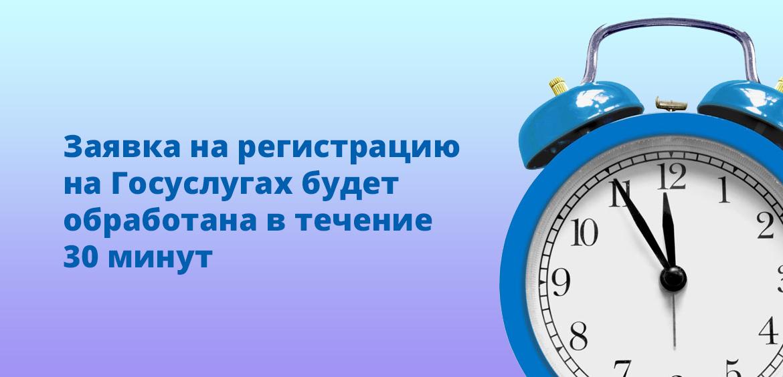 Заявка на регистрацию на Госуслугах будет обработана в течение 30 минут