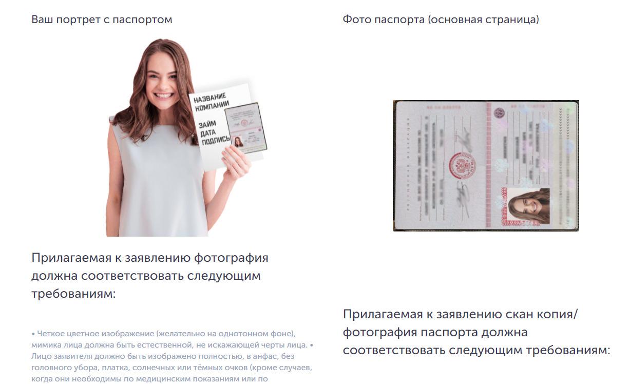 фото паспорта в мишка мани
